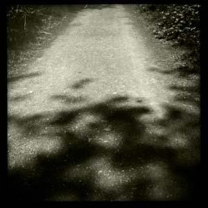 Shadows_hipstamatic
